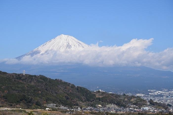 DSC_0227202001富士川