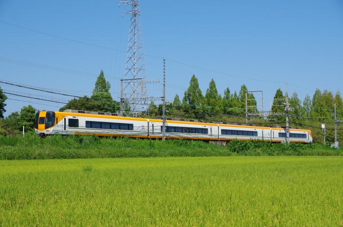 IMGP6552.jpg