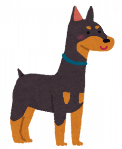 dog_doberman.png