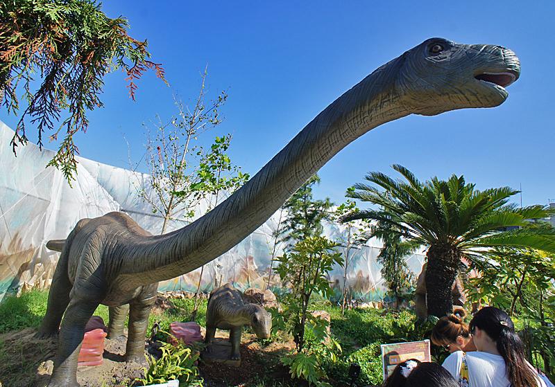 190804,恐竜05