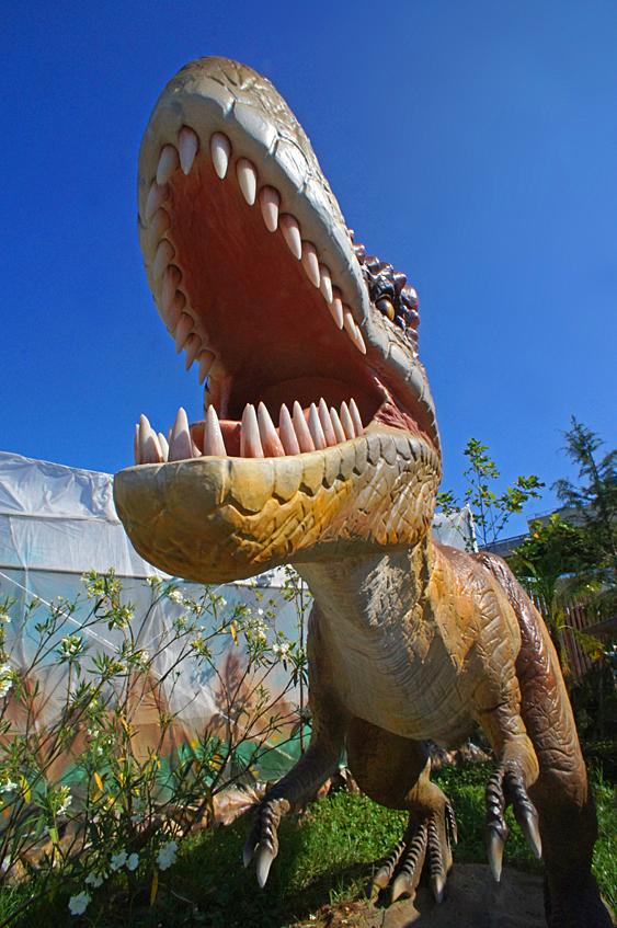 190804,恐竜09