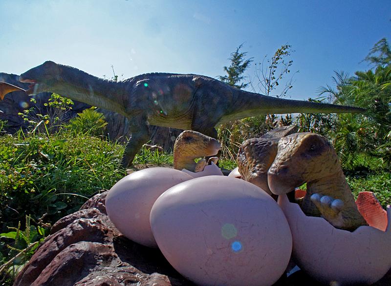 190804,恐竜12