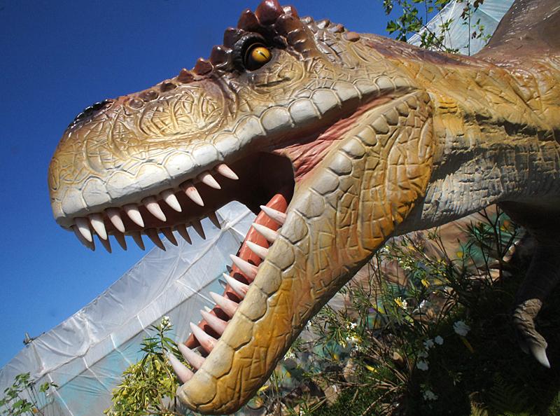 190804,恐竜13