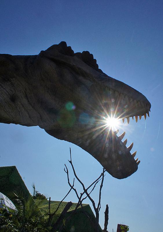 190804,恐竜14