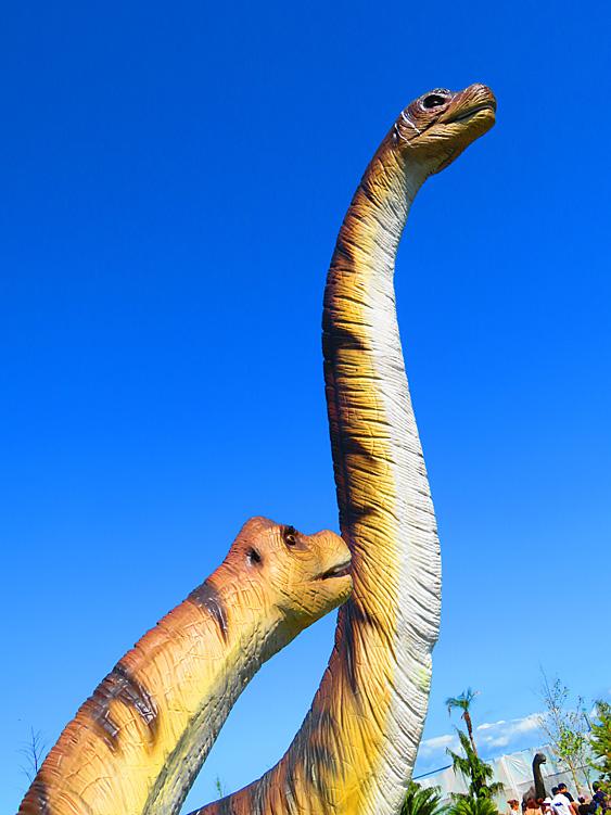 190804,恐竜15