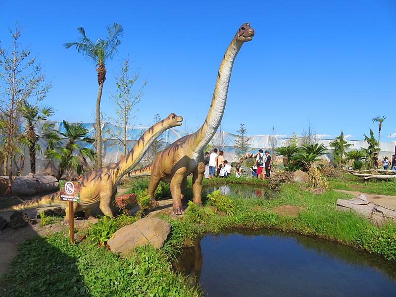 190804,恐竜17