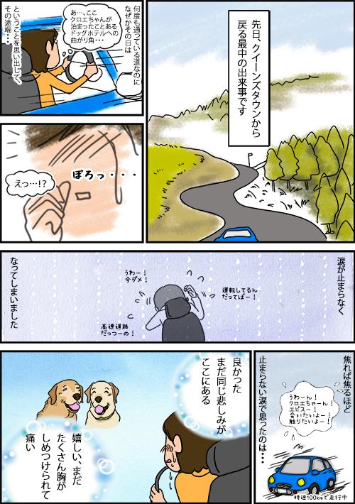 02022020_dogcomicB.jpg