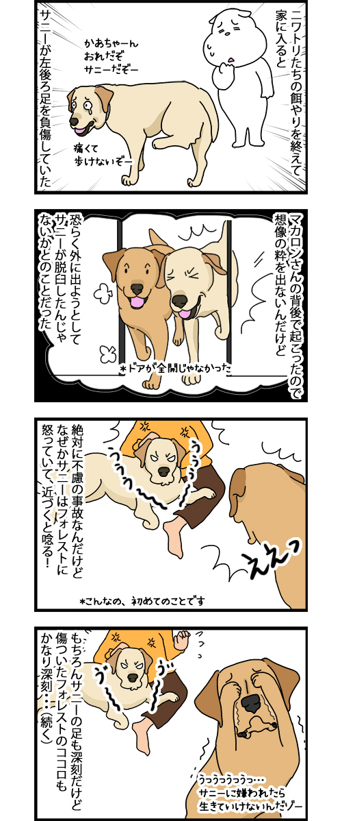 06012020_dogcomic.jpg