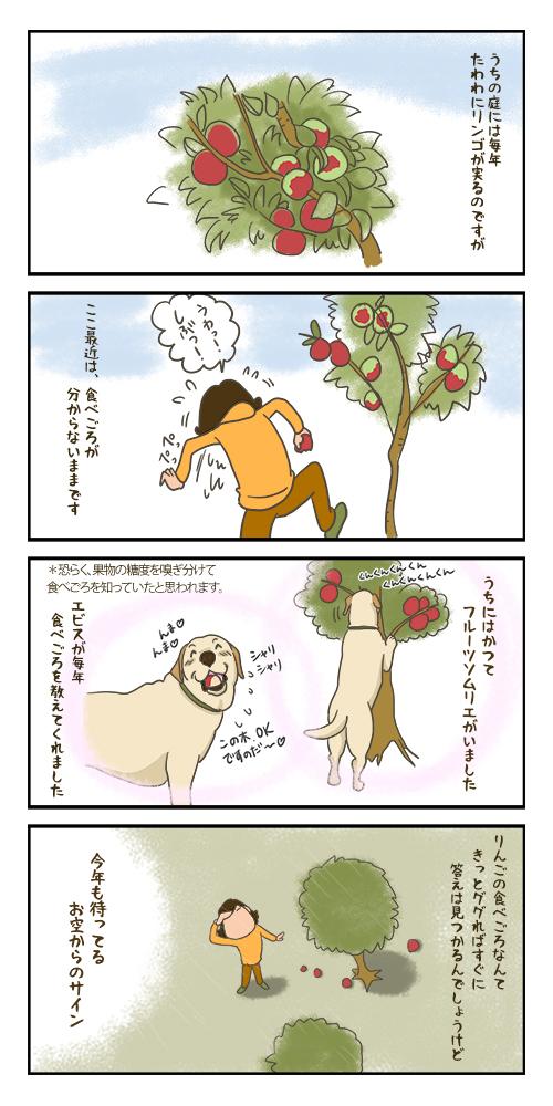 06022020_Tabegoro.jpg