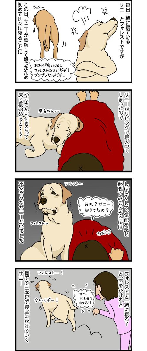 08012020_dogcomic_1.jpg