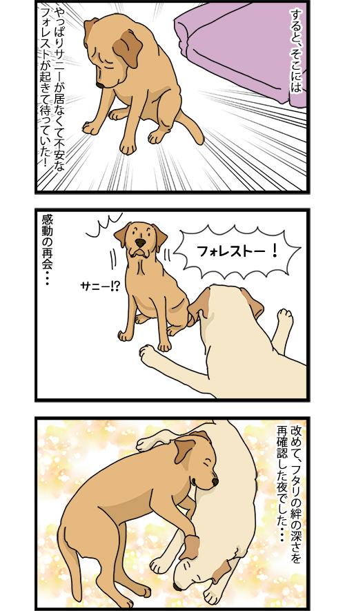 08012020_dogcomic_2.jpg
