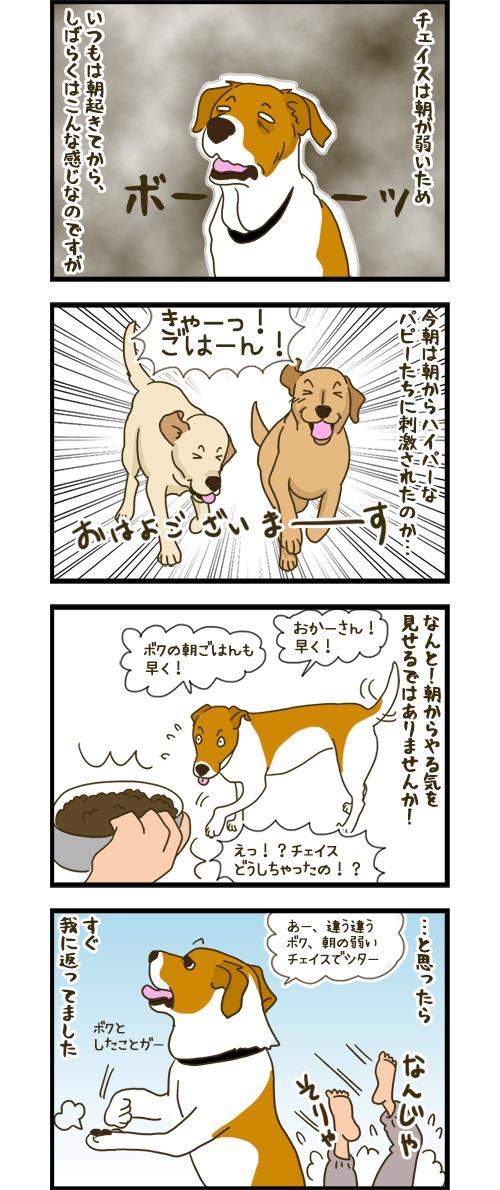09032020_dogcomic.jpg