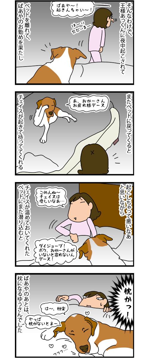 10122019_dogcomic.jpg