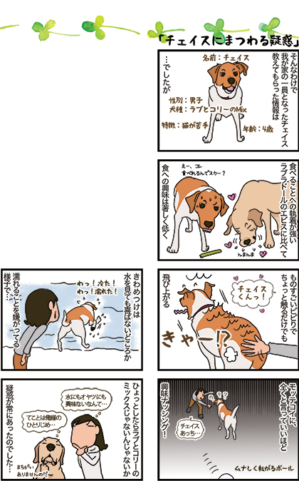 12012020_dog2.jpg