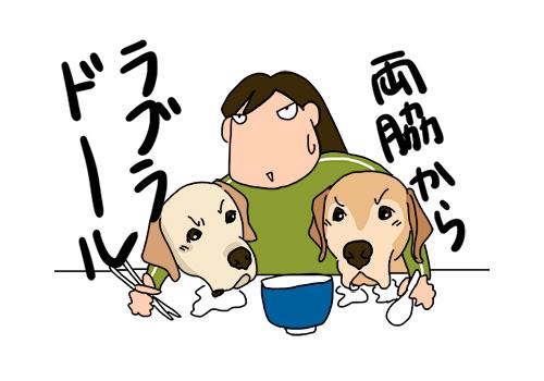 20012020_Dog1.jpg