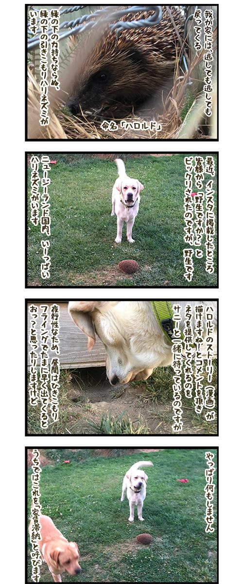 23012020_dogcomic.jpg
