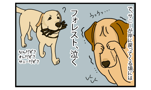 23122019_dogcomic_2.jpg