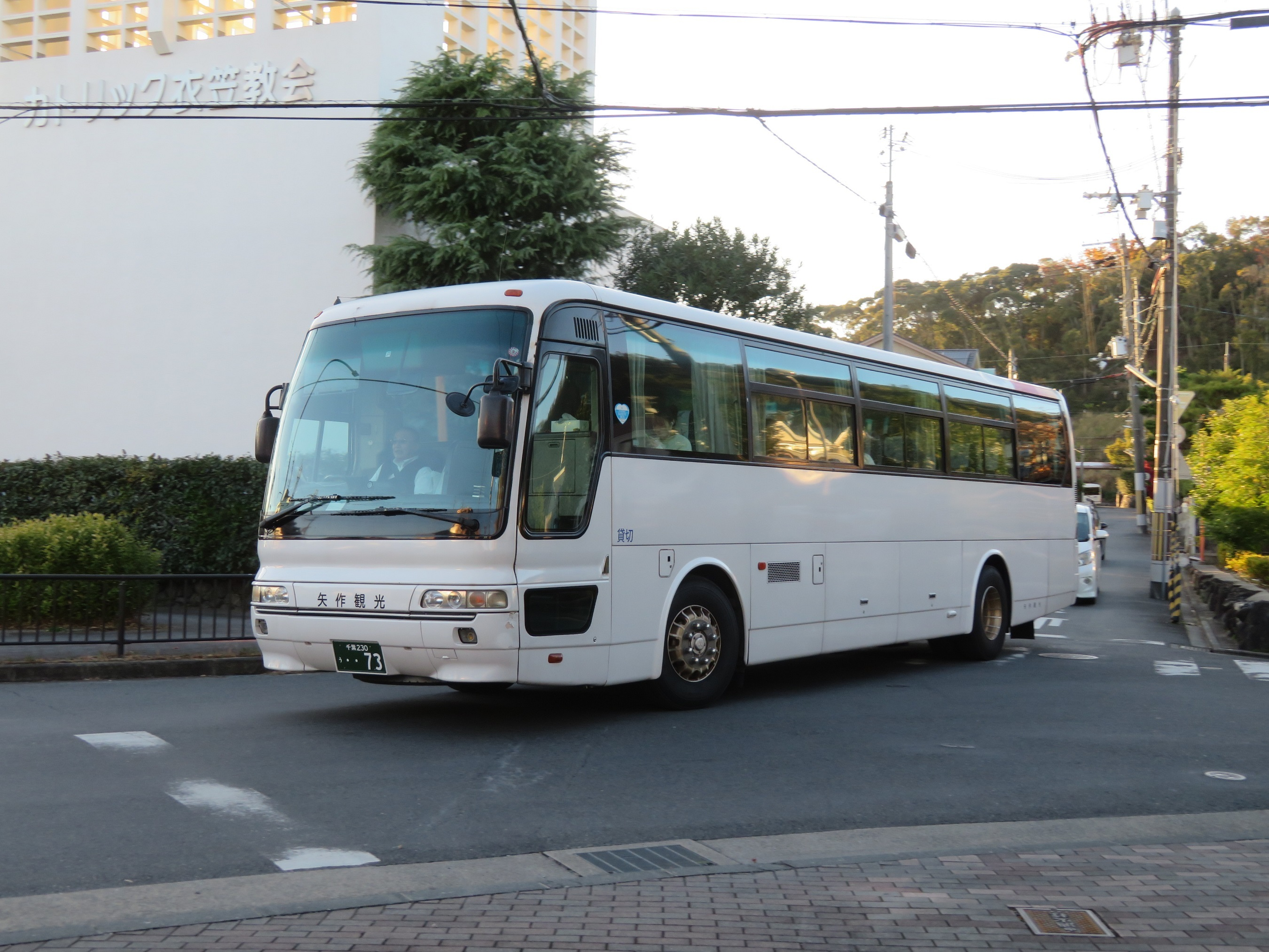 IMG_3681.jpg