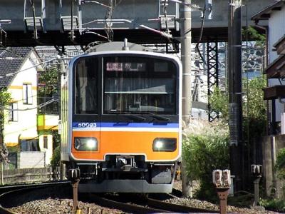 IMG_4349.jpg