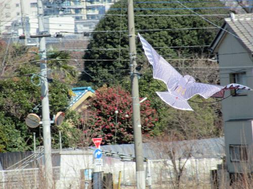鳥追いカイト