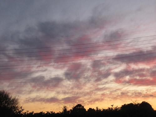 綺麗な夕焼雲