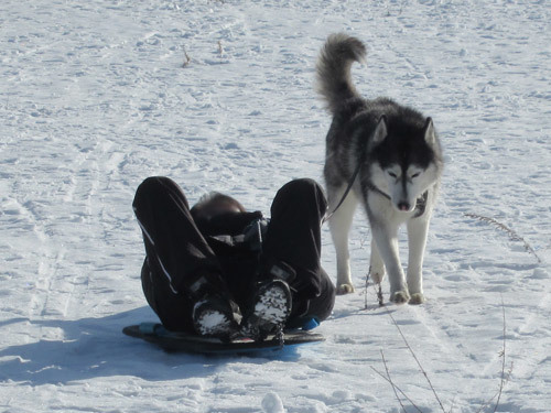 プラ橇で特訓