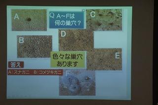 DSC03067.jpg