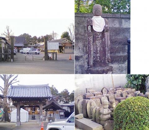 こぶ観音の桜201303(その1)