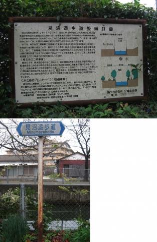 19桜並木の公園(連結その2)