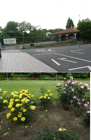 03川口市グリーンセンター(索引記事用)連結