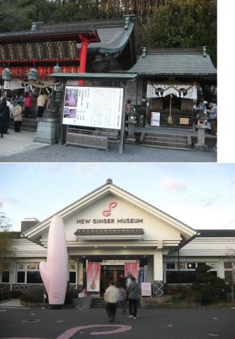 06新生姜ミュージアム202001(索引記事用)連結