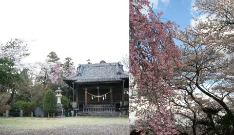 栃木市箱森町・巾着山公園と護国神社(索引記事用)連結