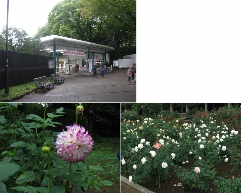 深大寺と神代植物公園(索引記事用)連結その1