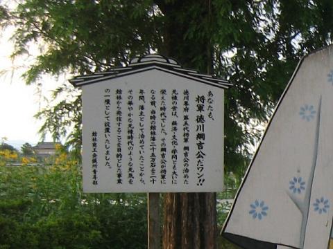 徳川綱吉の顔出し看板(その2)