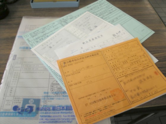 https://blogs.yahoo.co.jp/IMG/ybi/1/b1/f5/icarus777z/folder/1814451/img_1814451_62718956_1?1284854398