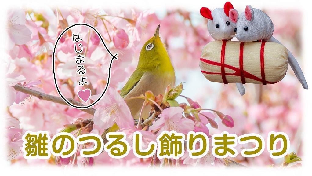 メジロ天国 003 mini