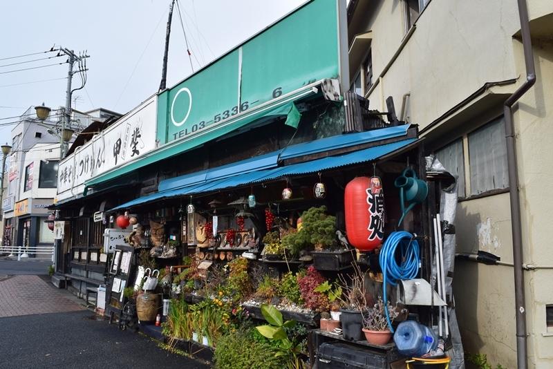 富士見ヶ丘12