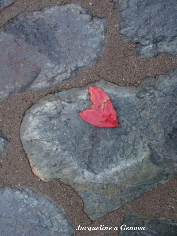 cuore_di_foglia2_191015