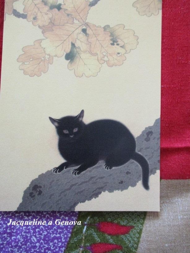 gatto_nero191222