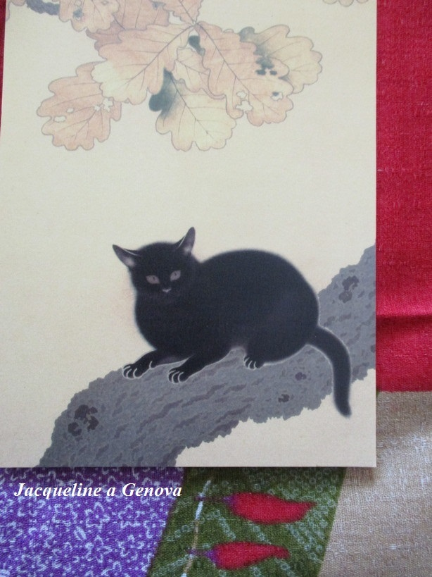 gatto_nero2_191222
