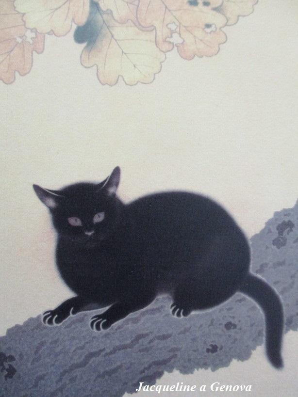 gatto_nero3_191222