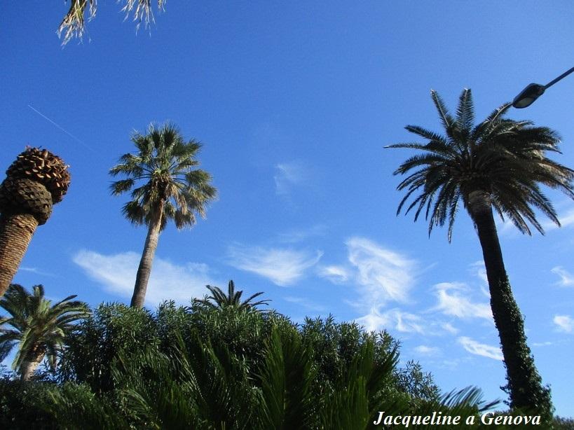palme200215