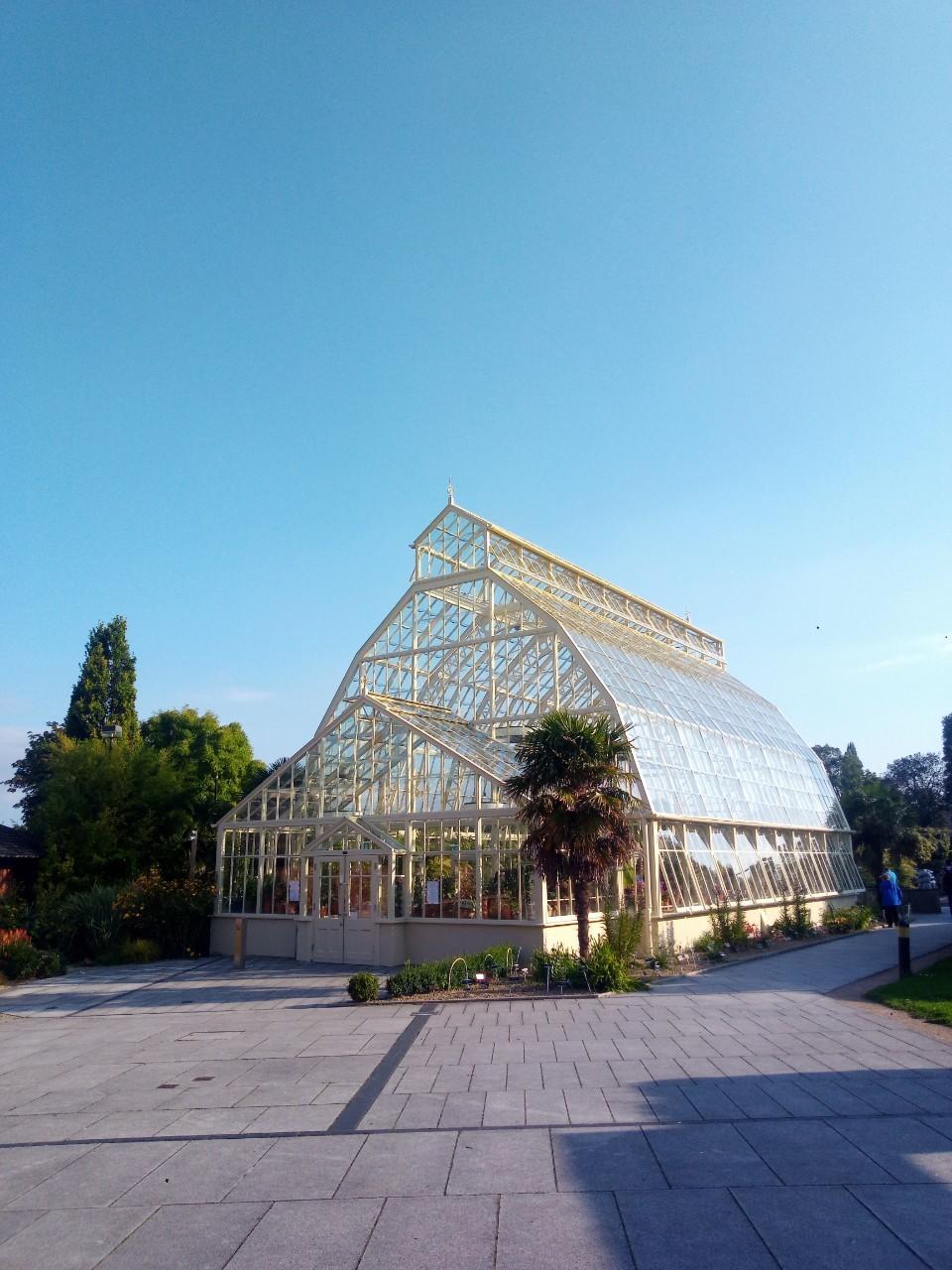 Dublin National Botanic Garden_190826_0029