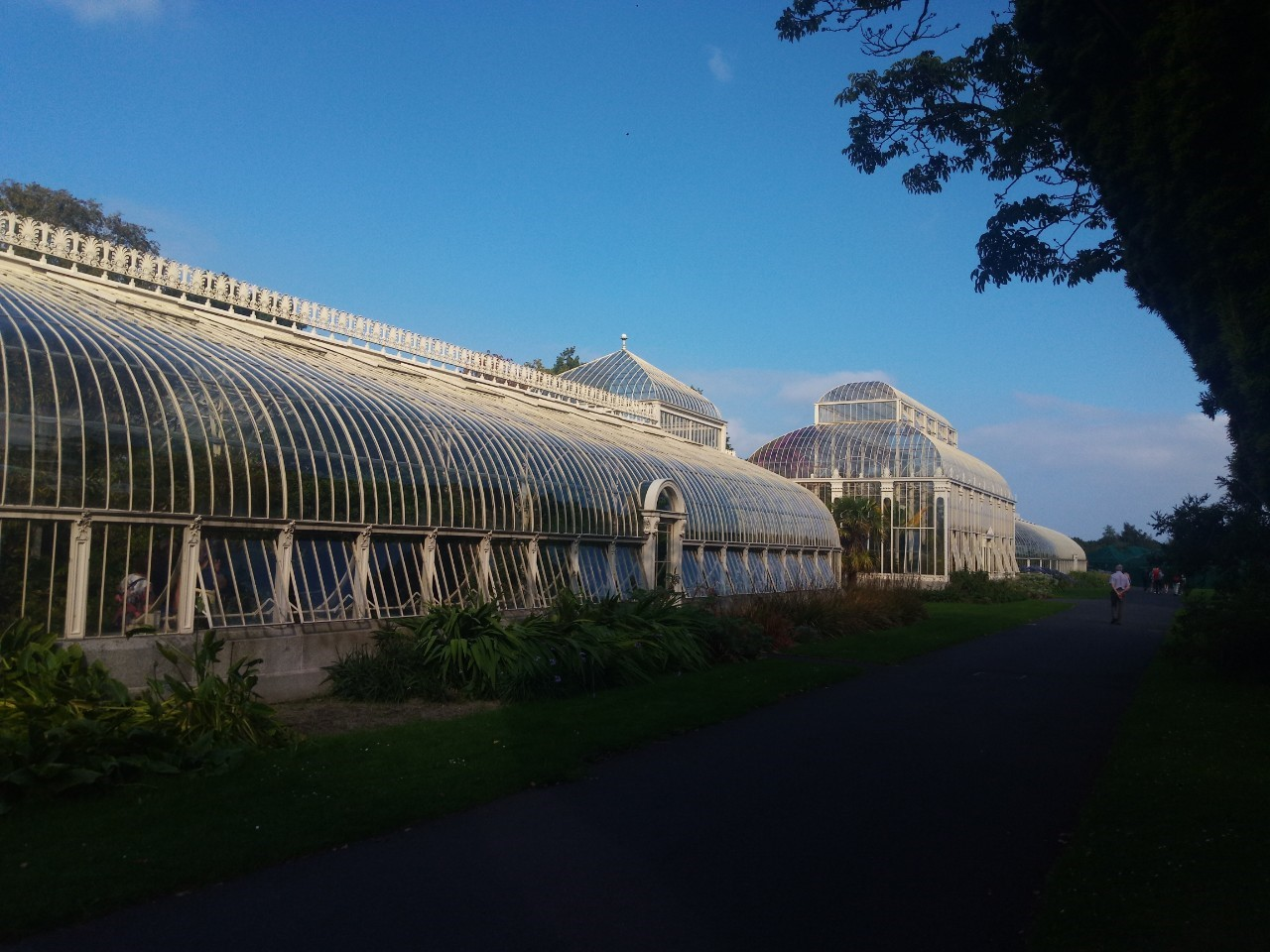 Dublin National Botanic Garden_190826_0021