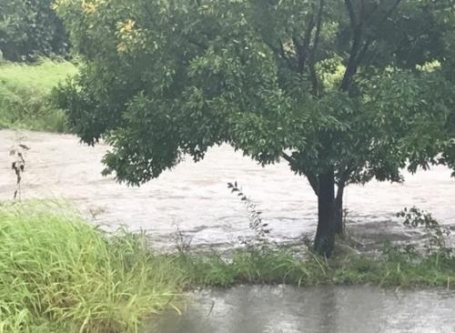 台風19柳瀬川