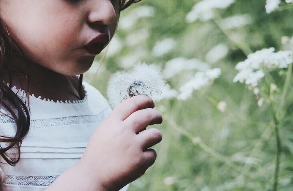見出し画像 ナツキ 女の子 白い花 Photo by Caroline Hernandez on Unsplash