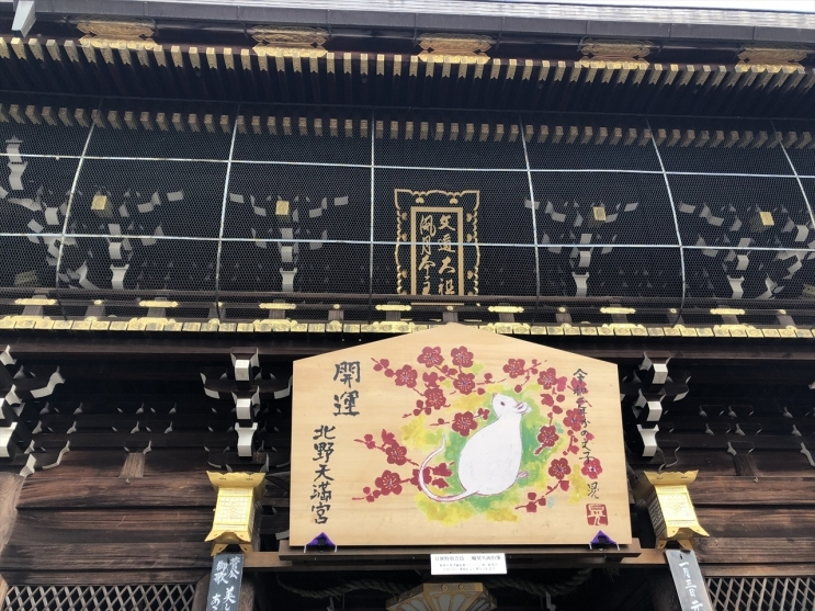 kyouto (5)