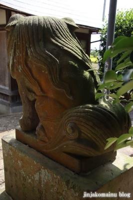 八幡香取神社 (杉戸町佐左ヱ門)20