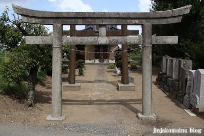 天神社 (幸手市惣新田)2