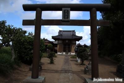 天神社 (幸手市惣新田)3